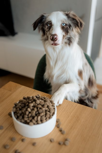 Panakei.sk - Naturálne krmivo pre psov