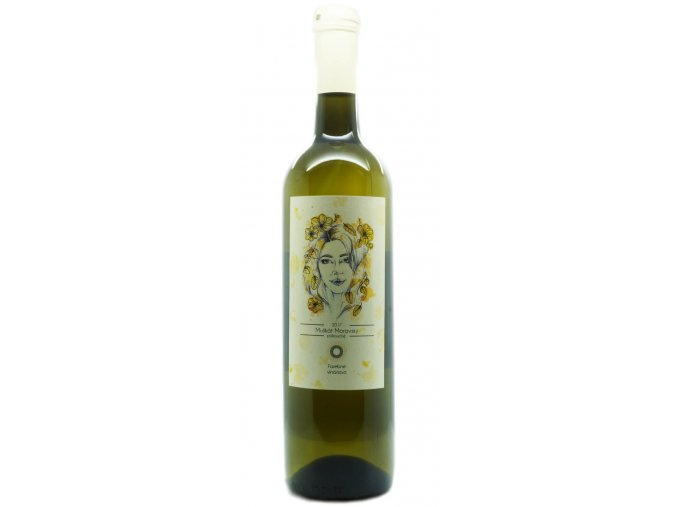 muskat moravsky farebne vinarstvo