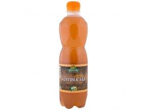 BIOLINIE kombucha černý čaj BIO - 500 ml