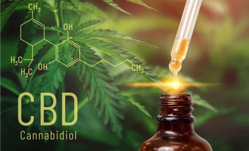 CBD olej - aké má účinky a ako vybrať najlepší cbd?