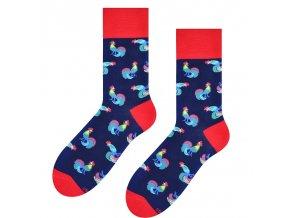 Kohútik jarabý ponožky modré