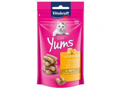 64621 pla vitakraft cat yums kaese 40g 6