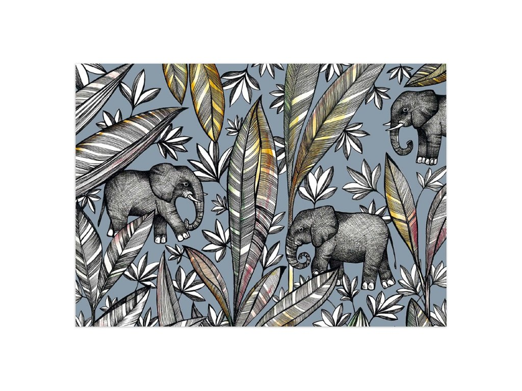 pohlednice ligarti slonici
