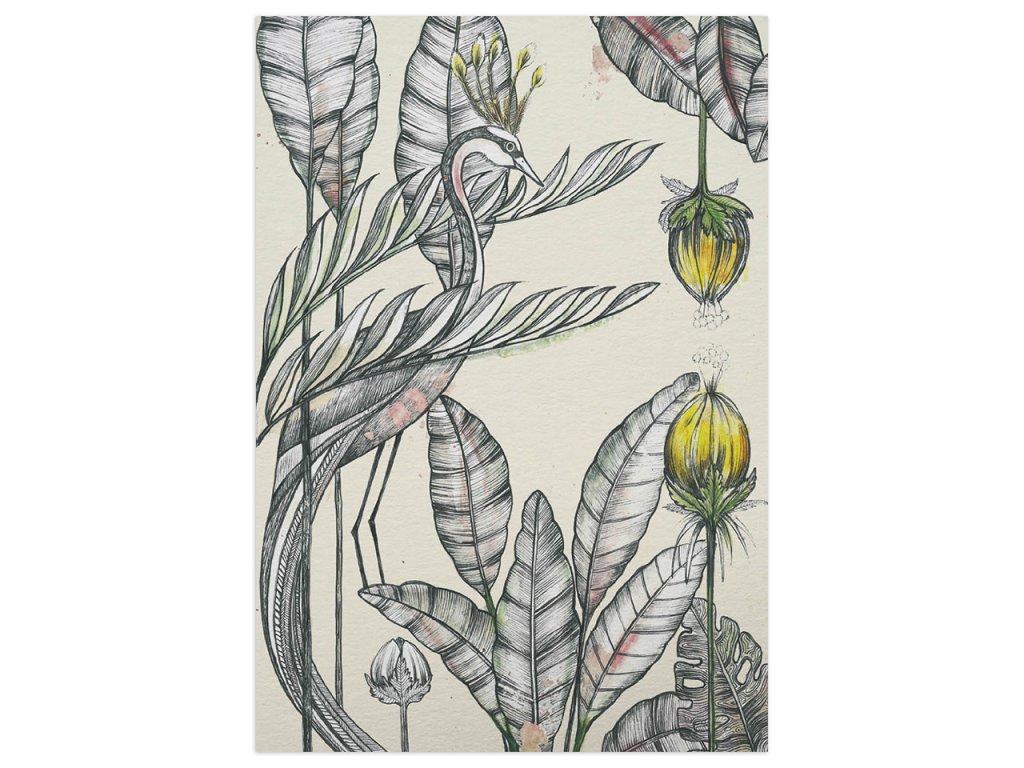 pohlednice ligarti jerab