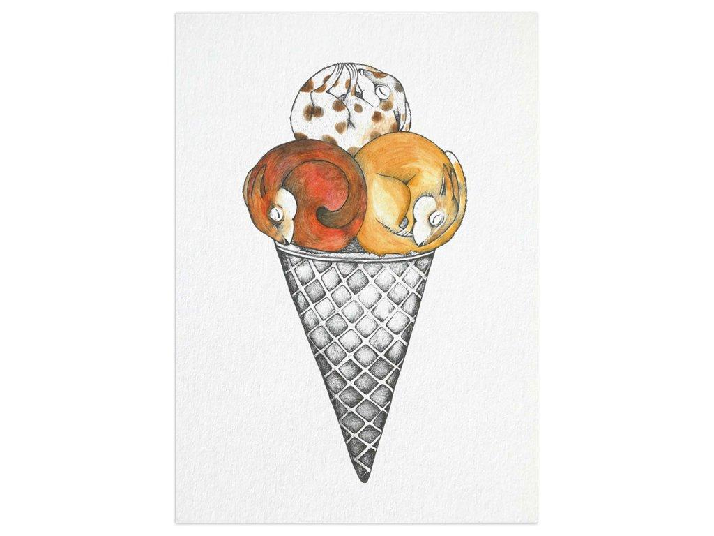 pohlednice ligarti zmrzlinove veverky