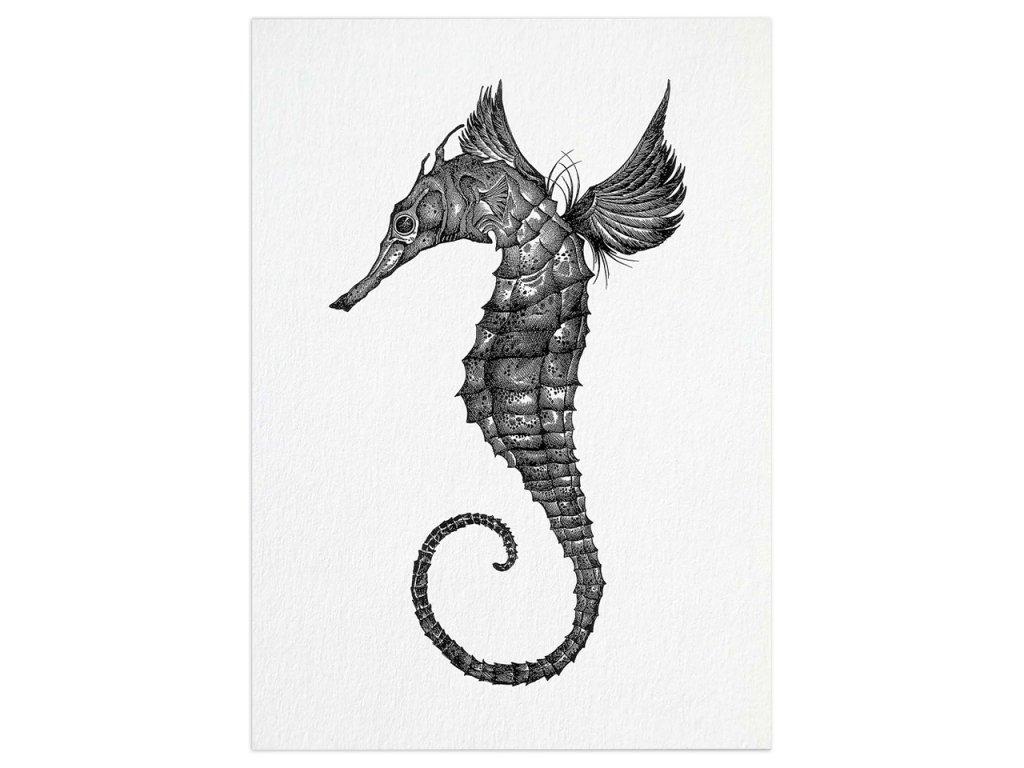 pohlednice ligarti morsky konik