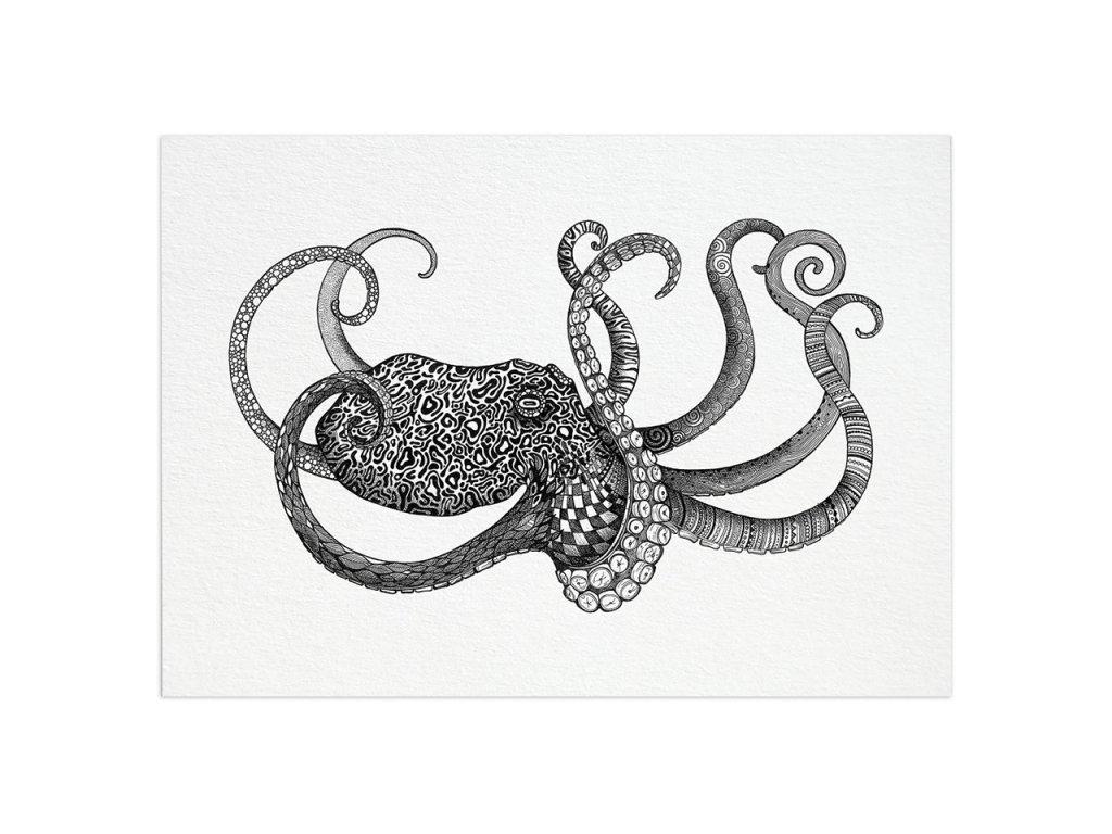 pohlednice ligarti chobotnice