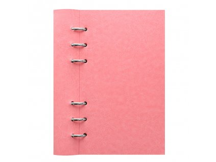 023632 Clipbook Classic Pastels Personal Rose1