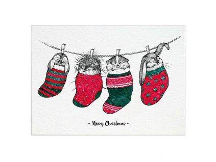 pohlednice ligarti ponozkova zviratka