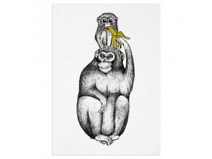 pohlednice ligarti papabanana