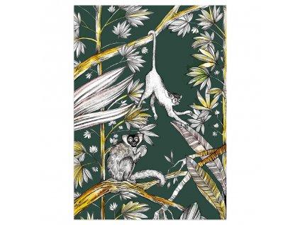 pohlednice ligarti opice