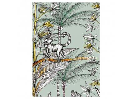 pohlednice ligarti opicak