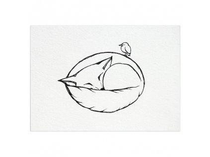 pohlednice ligarti spici liska