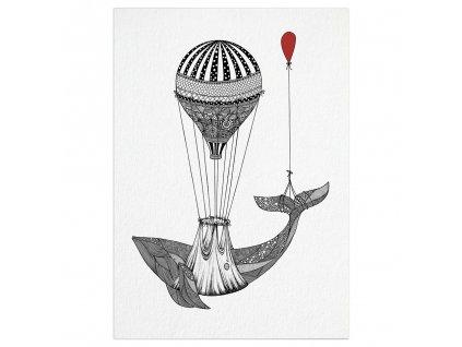 pohlednice ligarti velrybi transport