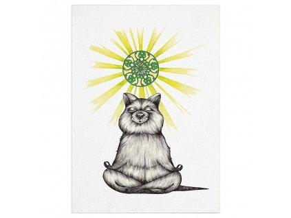 pohlednice ligarti medvedi joga