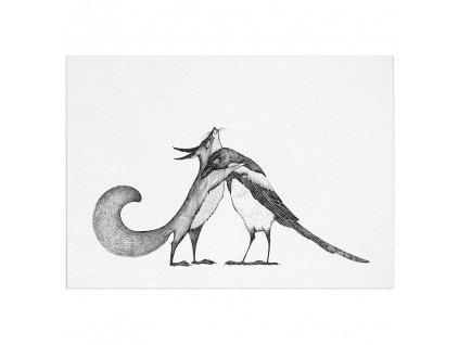 pohlednice ligarti veverka a straka
