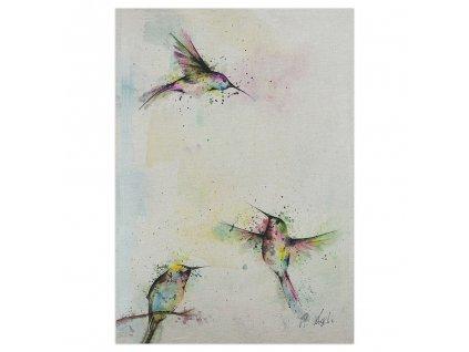pohlednice ligarti tri kolibrici