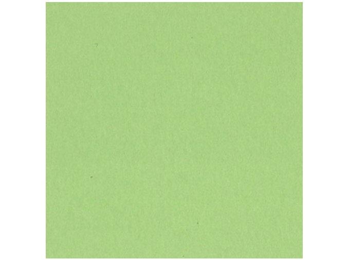 BAZZIL BASICS - hladká čtvrtka Smoothies - LIME CRUSH