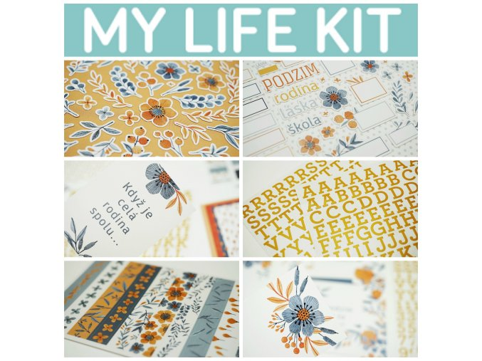 PicMonkey Collage my life kit zari 2019 banner