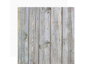Papír na scrapbook - COLOR VIBE / Birch