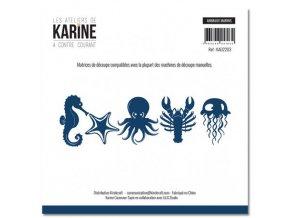 dies a contre courant animaux marins les ateliers de karine