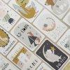 Milníkové kartičky pro miminko na focení s kutalými rožky Papero amo 5