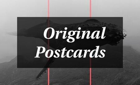 Original postcards