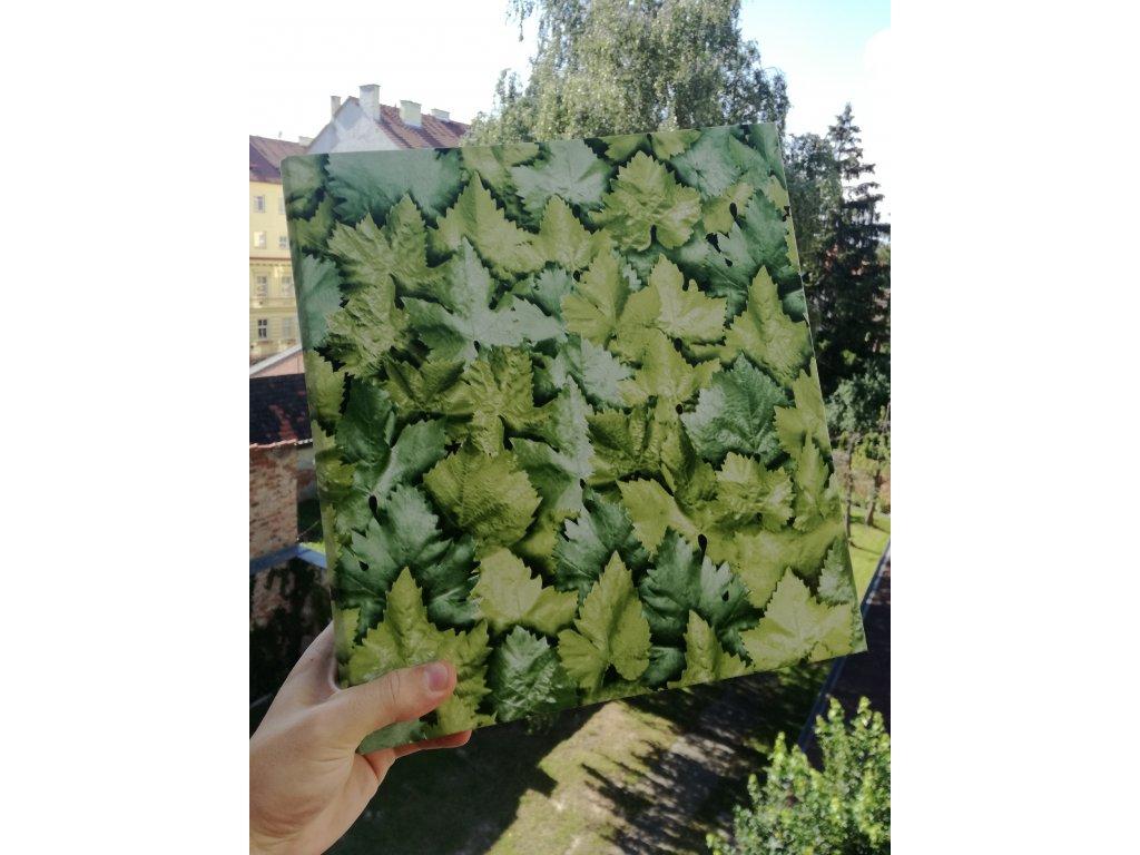 Album for postcards Green leaves - 400 postcards - 4 postcards per sheet