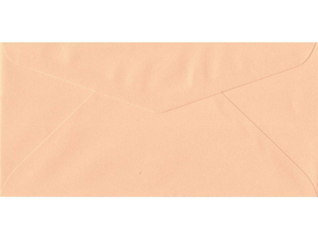 1250 obalka lososova dl 110x220 mm