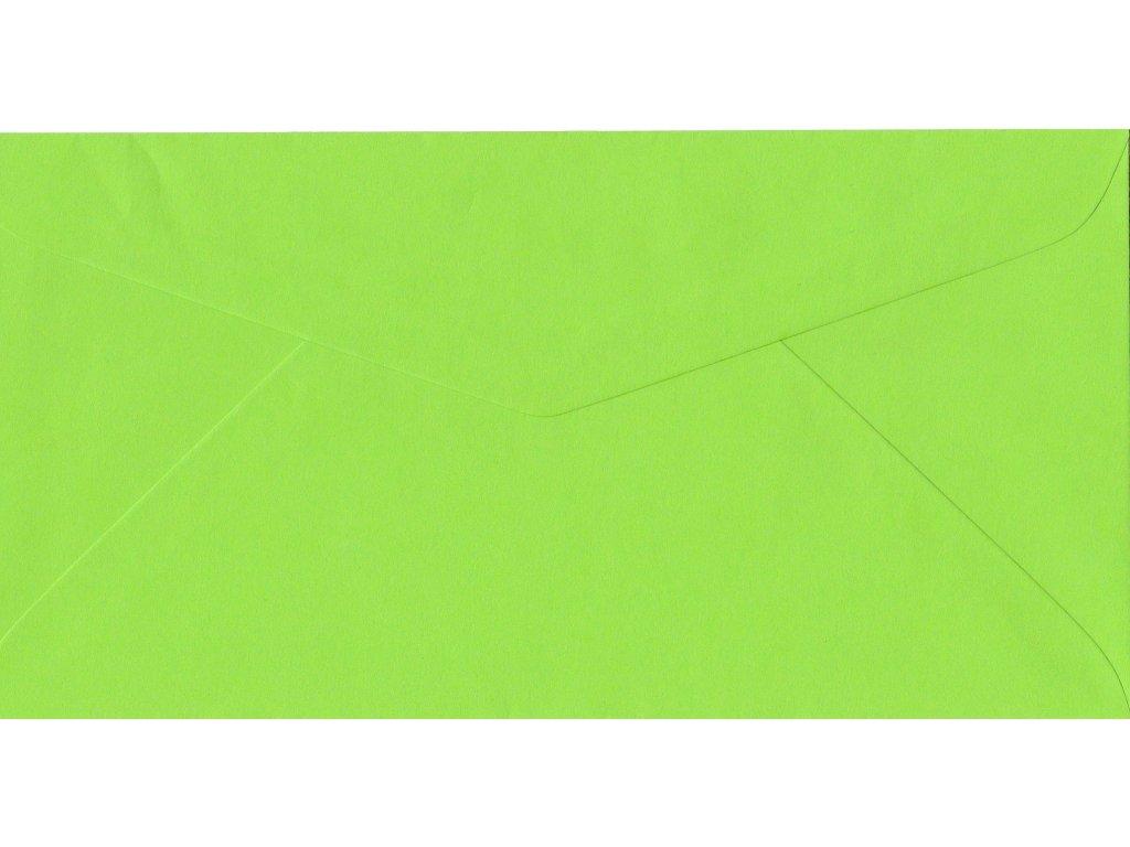 590 obalka svetle zelena dl