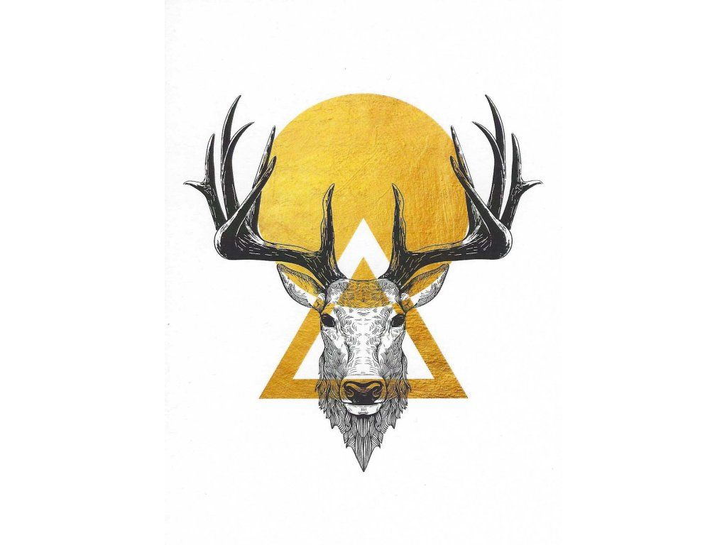 Postcard - Deer in the sun