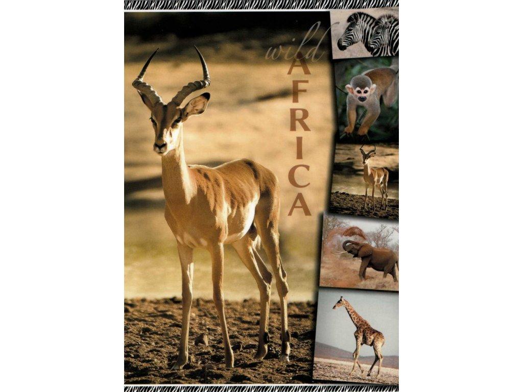 12116 2 pohlednice antilopa