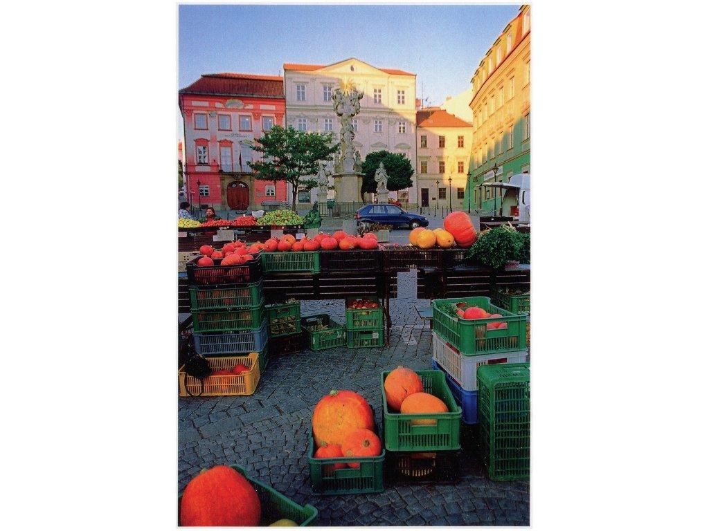 Postcards Pumpkins on the Green Market