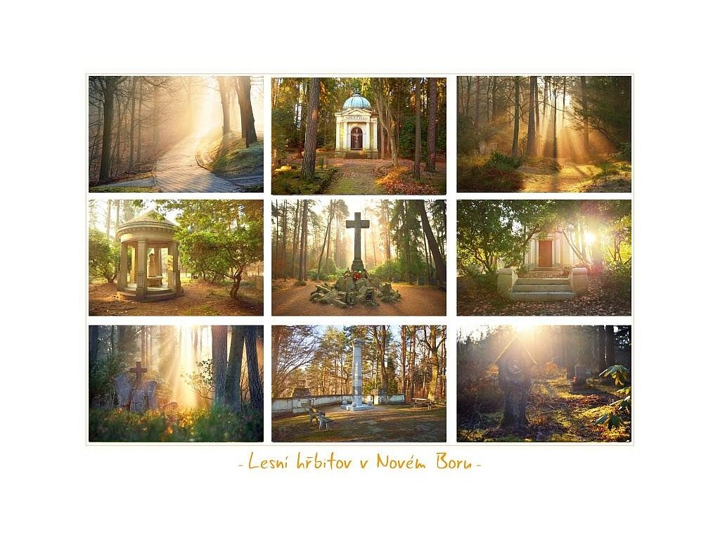 332 2 pohlednice lesni hrbitov v novem boru 21 x 15 5 cm velka verze