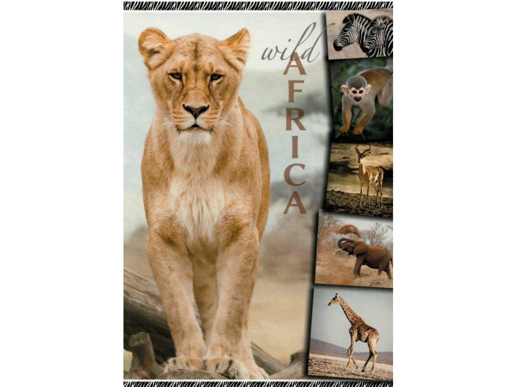 12119 2 pohlednice lvice