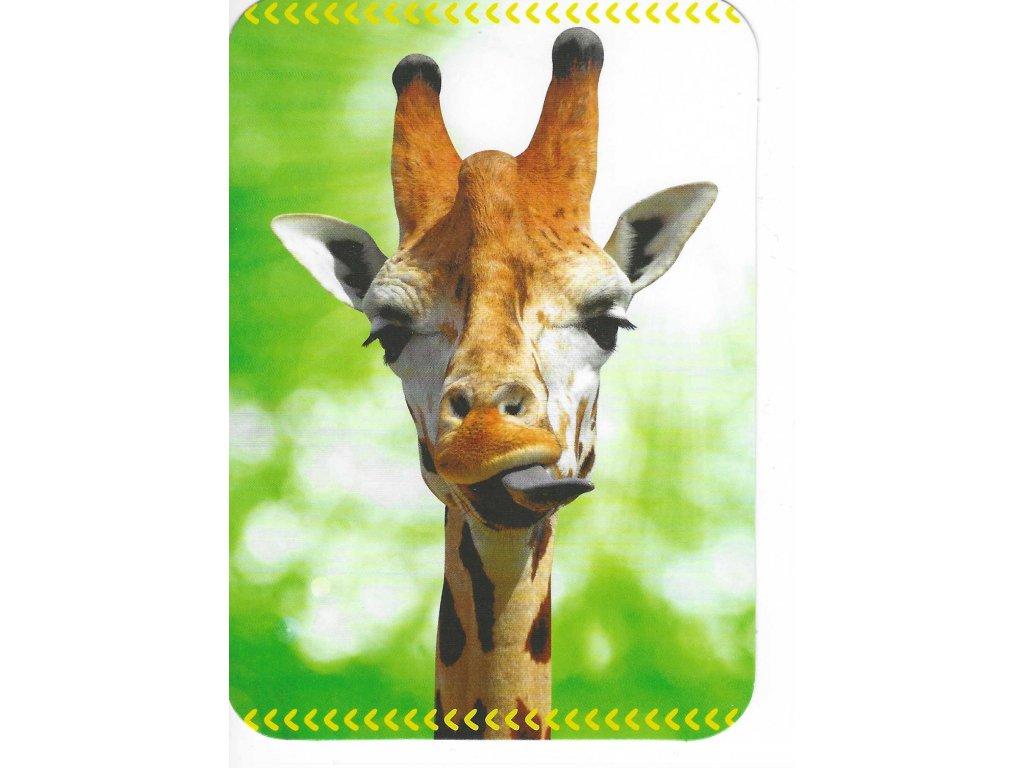 15158 3 pohlednice potouchla zirafa