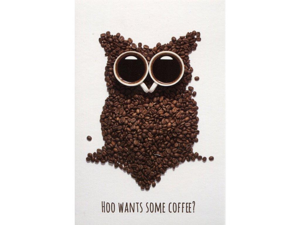 8774 2 pohlednice sova hoo wants some coffee