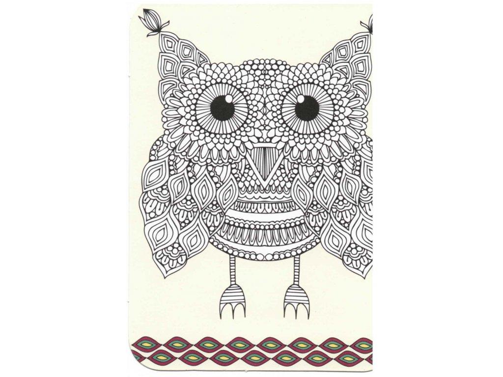 Postcard Owl 2