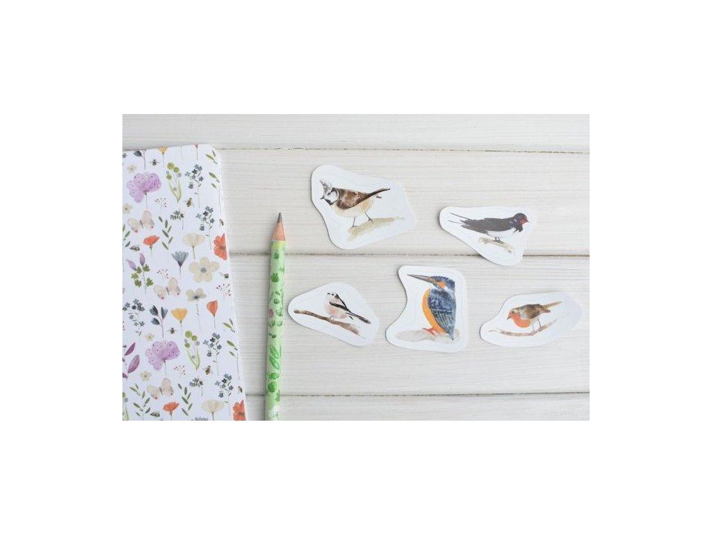 3761 nalepky ptacci1