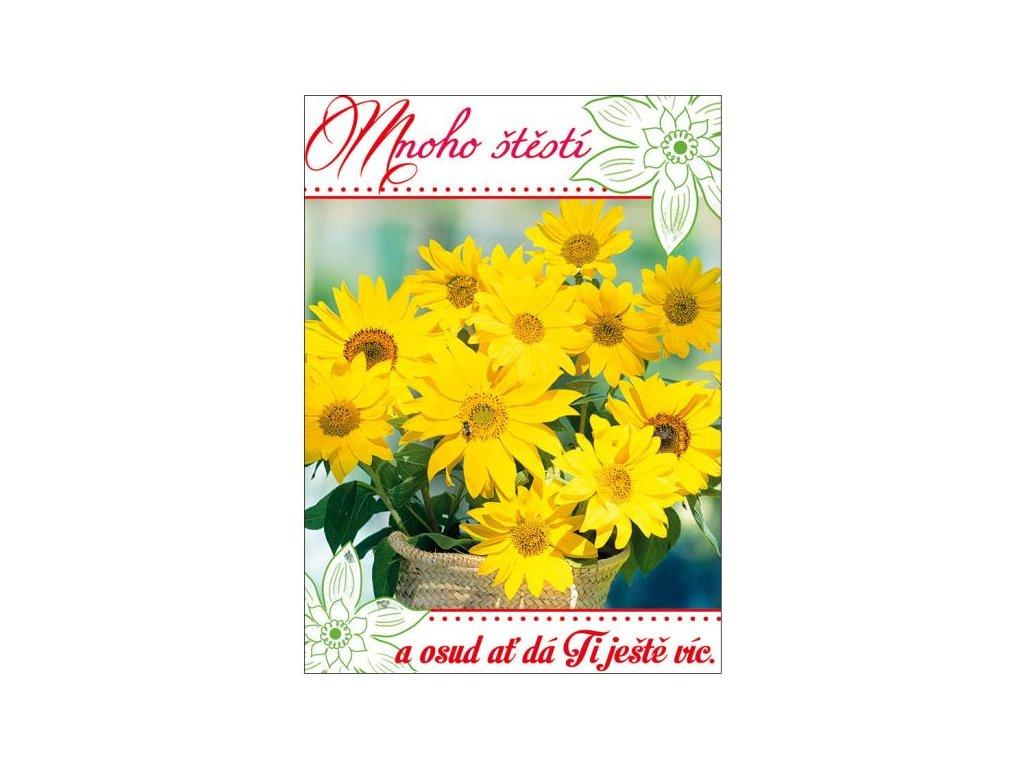 pohlednice (3