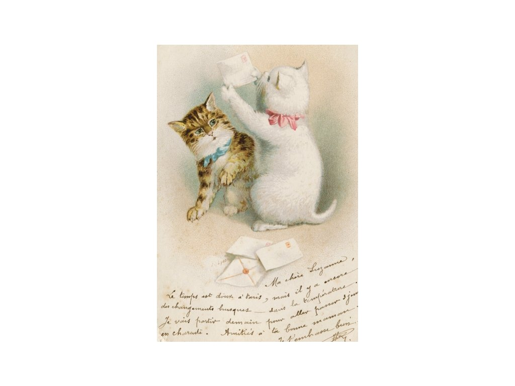 Postcard Cats with a letter