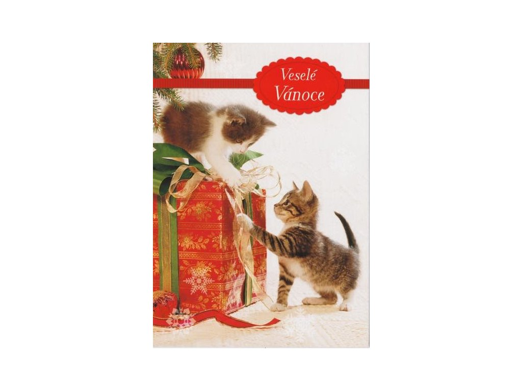 Postcard Merry Christmas, kittens with a gift