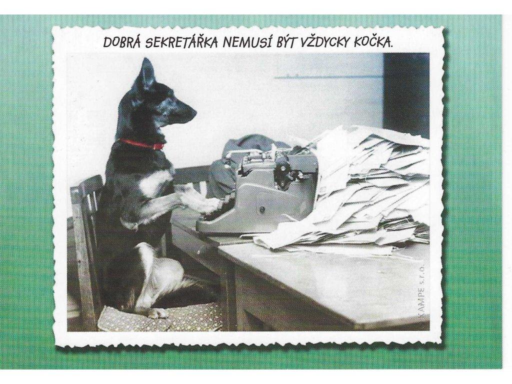 Postcard Good secretary