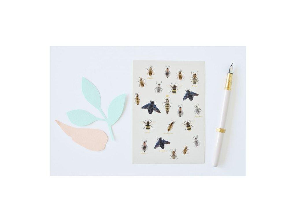 pohlednice vceli druhy