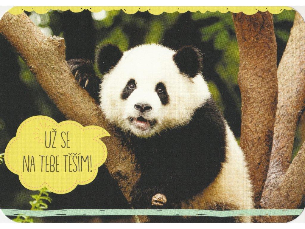 Postcard Panda is looking forward to see you