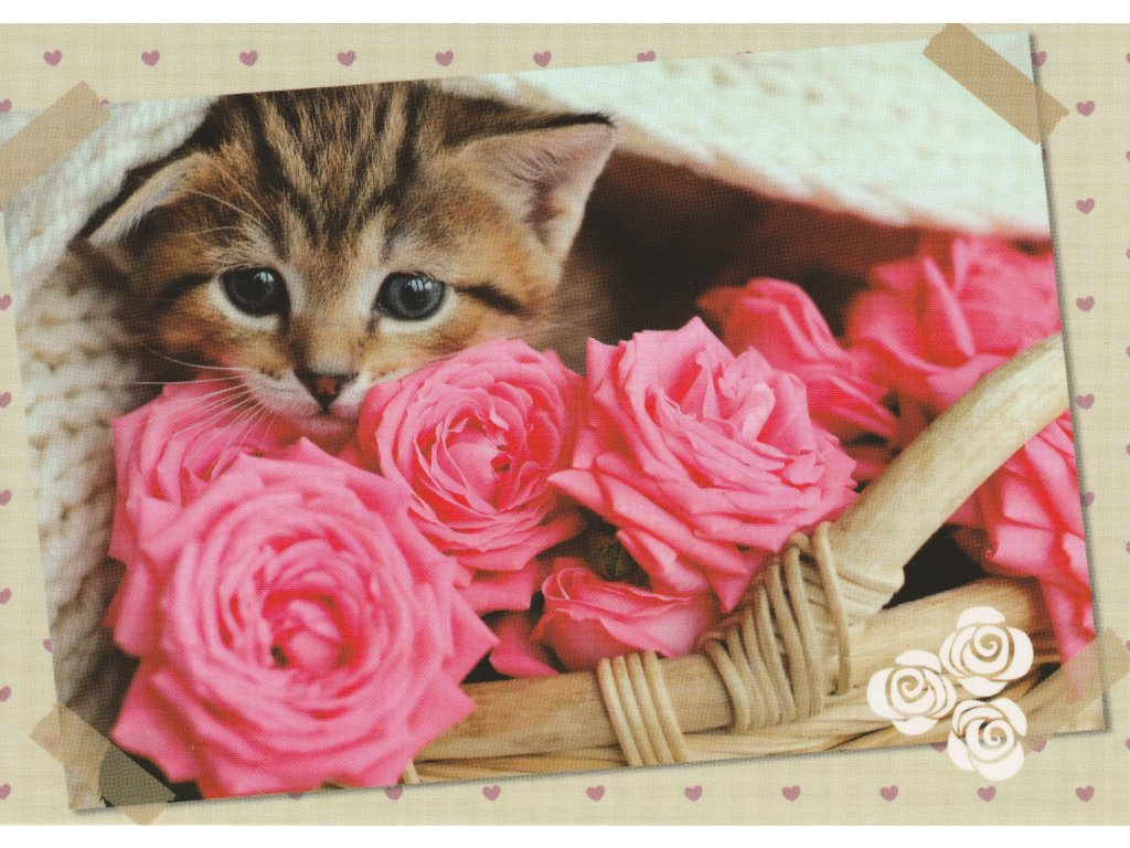 Postcard Kitten with roses 2
