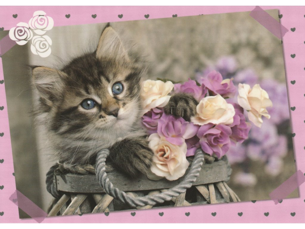Postcard Kitten with roses 1
