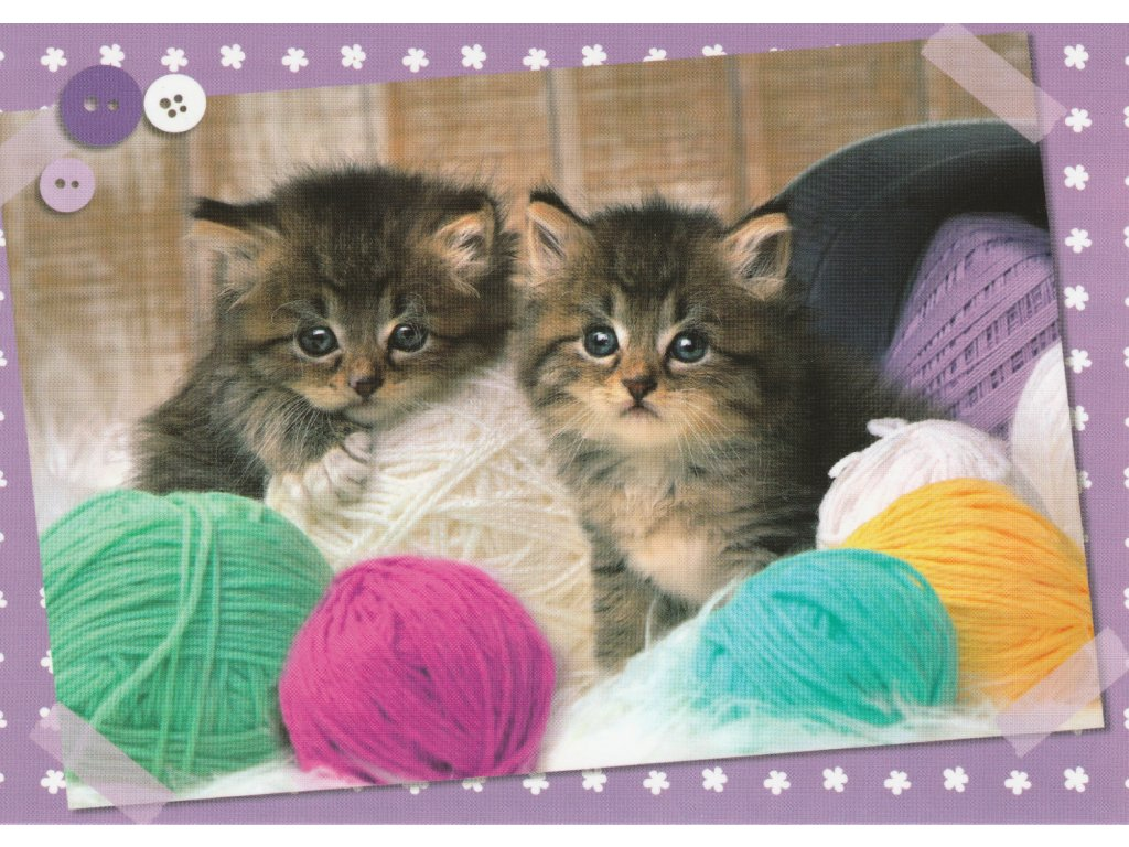 Postcard Kittens with colored skeins
