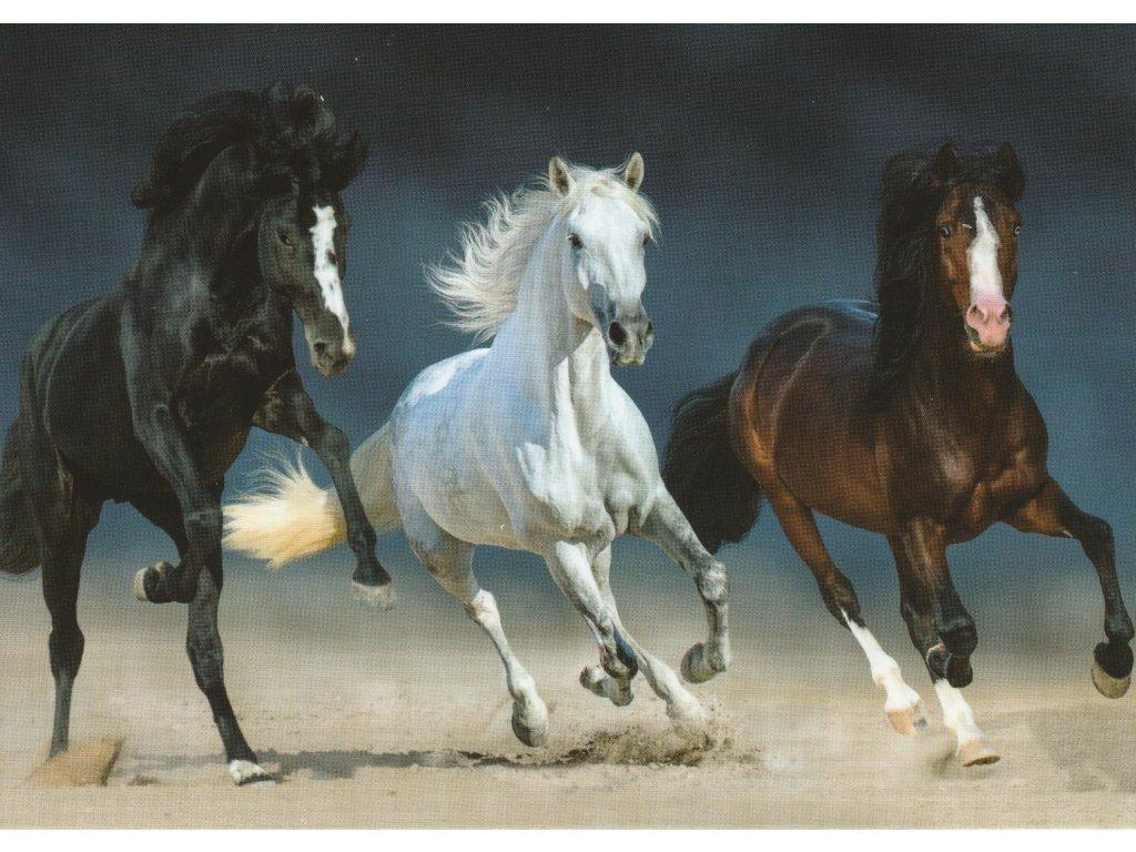 Postcard Three coloured horses race