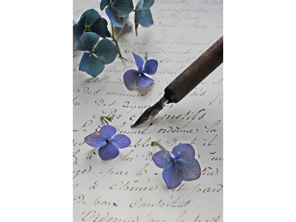 Postcard Pen and letter